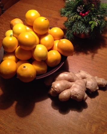 Lemons & ginger